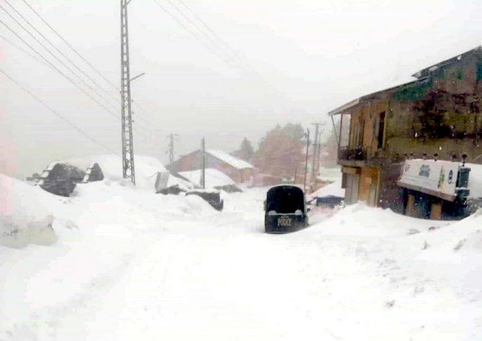 ایبٹ آباد ،شدید برف باری کے بعد خوبصورت منظر