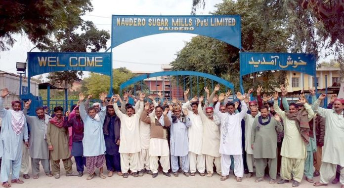 لاڑکانہ ،کاشتکار شوگر ملز مالکان کے خلاف احتجاج کررہے ہیں