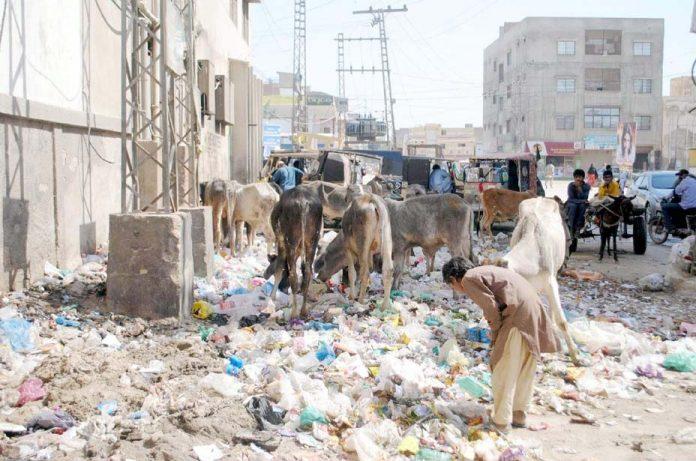 حیدر آباد، قاسم آباد میں سڑک کے کنارے جمع کچرے کا ڈھیر مقامی انتظامیہ کی کارکردگی کا پول کھول رہا ہے