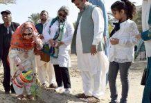 صدرہمدرد فاؤنڈیشن سعدیہ راشد جاپان پاکستان کلچرایسوسی ایشن کے اراکین کے ہمراہ جامعہ ہمدردمیں سوہانجنے کاپودالگارہی ہیں