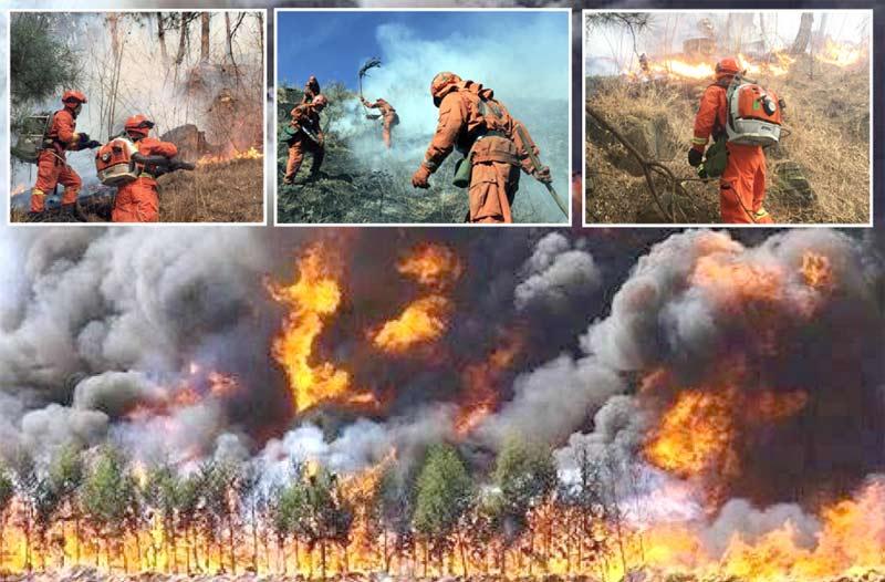 چین: جنگلات میں لگی آگ سے خوفناک شعلے اور دھواں بلند ہورہا ہے' فائربریگیڈ کے اہل کار قابو پانے میں مصروف ہیں