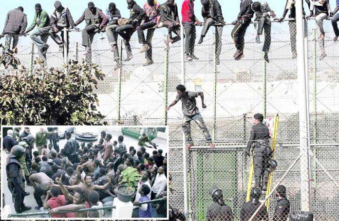 میلیلا: ہسپانوی پولیس اہل کار مراکش سے سرحدی باڑ عبور کرکے داخلے کی کوشش کرنے والوں کو گرفتار کررہے ہیں