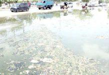 یونیورسٹی روڈ پر سیوریج کا پانی پھیلا ہوا ہے جس سے ٹریفک کو دشواری کا سامنا ہے
