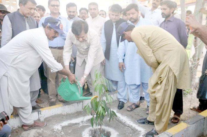 حیدر آباد : چیف سیکرٹری سندھ سید ممتاز علی شاہ شجر کاری مہم کے حوالے سے ایکسپو سینٹر میں پودا لگا رہے ہیں