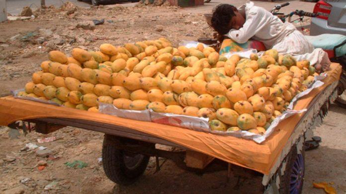 مہنگائی کی وجہ سے کاروبار نہ ہونے کے باعث گاہکوں کا انتظار کر تے ہوئے پھل فروش سو گیا