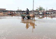 پشاور،کیٹل مارکیٹ میں جمع بارش کا پانی گاہکوں کی آمدورفت میں مشکلات پیدا کررہا ہے