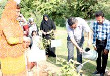 ایوان لیاقت گرلز ہاسٹل جامعہ کراچی میں شجر کاری مہم کا افتتاح وائس چانسلر پروفیسر خالد محمود عراقی پودا لگا کر کر رہے ہیں