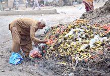 حیدرآباد ،بزرگ شہری سبزی منڈی پر جمع کچرے کے ڈھیر سے اپنے لیے سبزی و فروٹ تلاش کررہا ہے