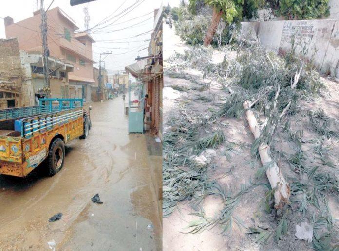 ٹنڈوجام ،موسلادھار بارش کے بعد درخت گرے ہوئے ہیں ،دوسری جانب سڑک پر پانی جمع ہے