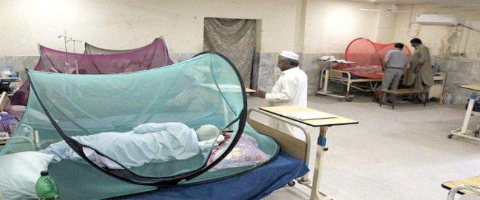 پشاور،لیڈی ریڈنگ اسپتال میں ڈینگی کے مریضوں کا حفاظتی اقدامات کے تحت علاج کیا جارہا ہے