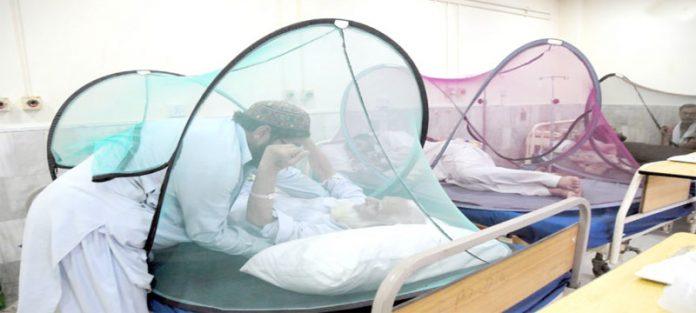 پشاور،ڈینگی کے مریضوں کا حفاظتی اقدامات کے تحت علاج کیا جارہا ہے