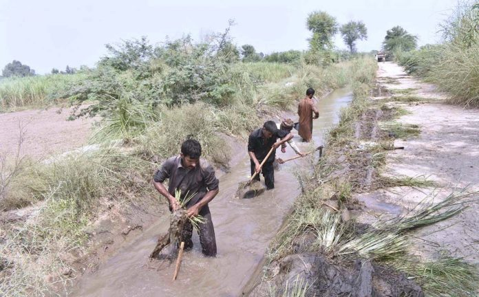 فیصل آباد : کسان نہر کی صفائی کے کام میں مصروف ہیں
